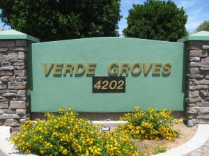 Verde Groves 55+