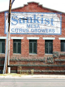 Mesa Sunkist citrus grower
